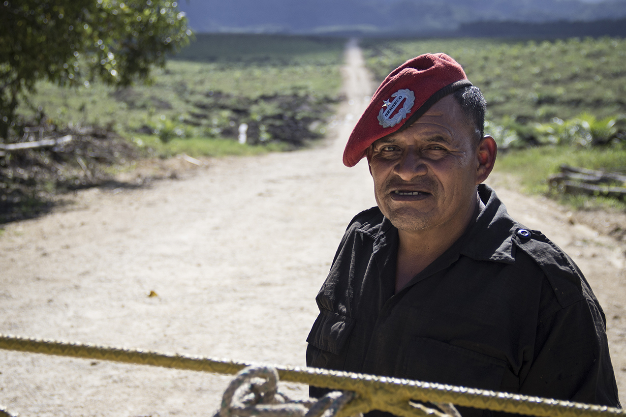 Un guardián de una finca de palma dice que su jefe prohibió a los pobladores de Sechaj usar el camino para conseguir leña.