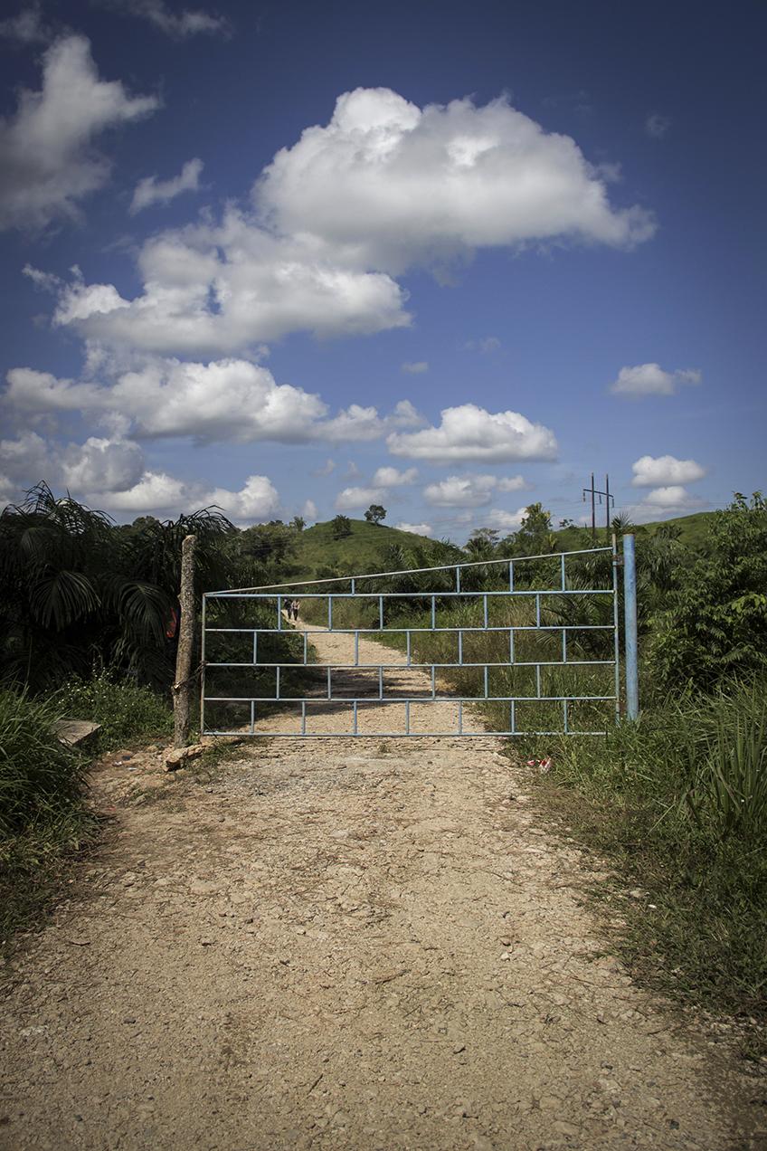 """En la franja transversal, fincas de palma han cerrado caminos a poblados. Un auxiliar de la municipalidad de Raxruhá explicó que """"dejan el paso abierto para gente caminando, pero no pueden entrar carros""""."""
