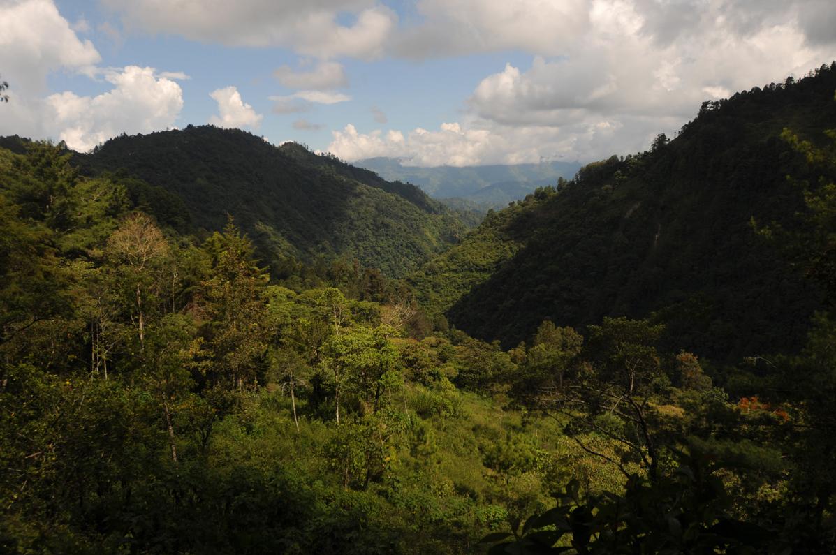 Vista del terreno propiedad de la hidroeléctrica.