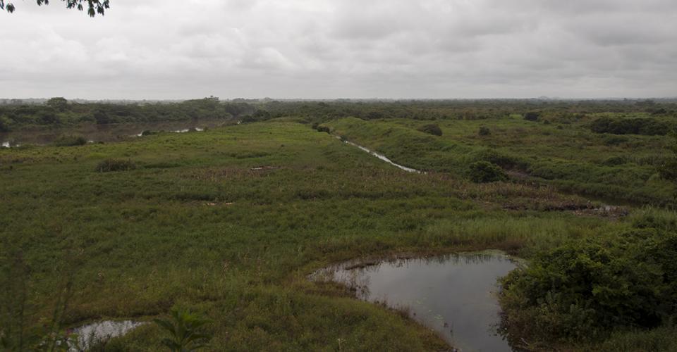 Un quinel construído por Repsa conecta con el rio La Pasión. De ahí extraían, y retornaban, agua del río que se visualiza al fondo.