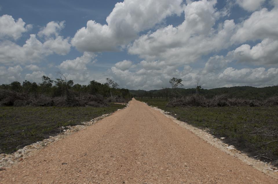 La carretera que realizan en el interior de la finca.