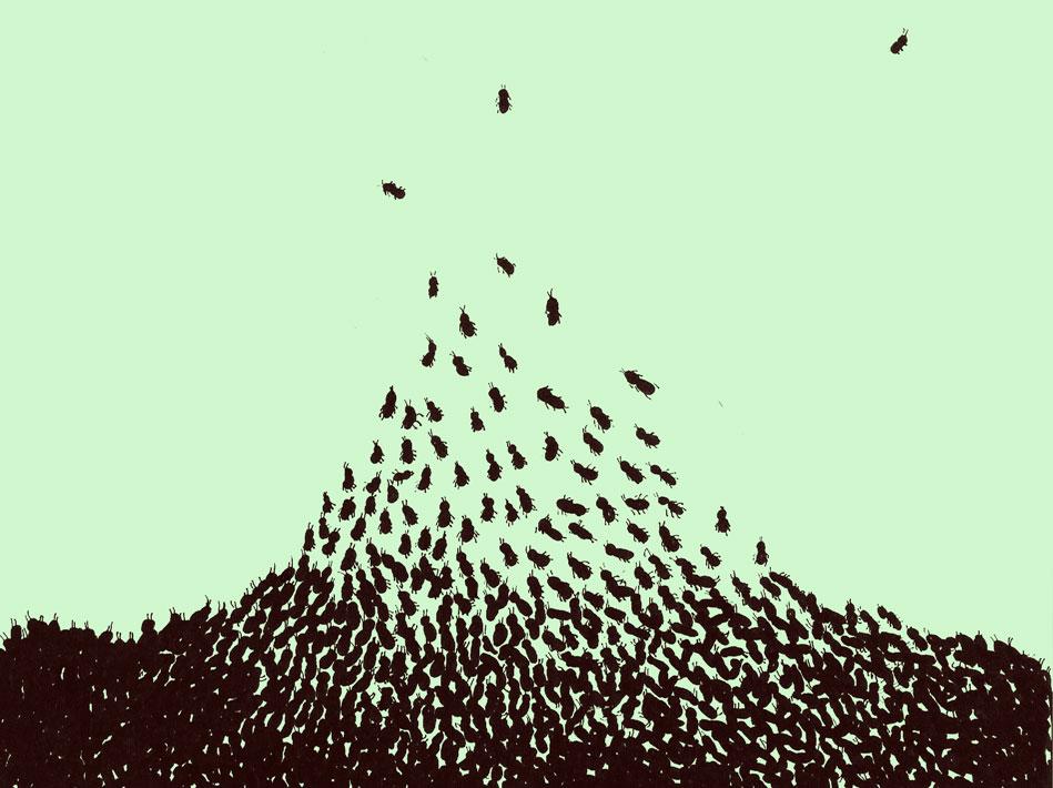 Ilustración de Nora Pérez