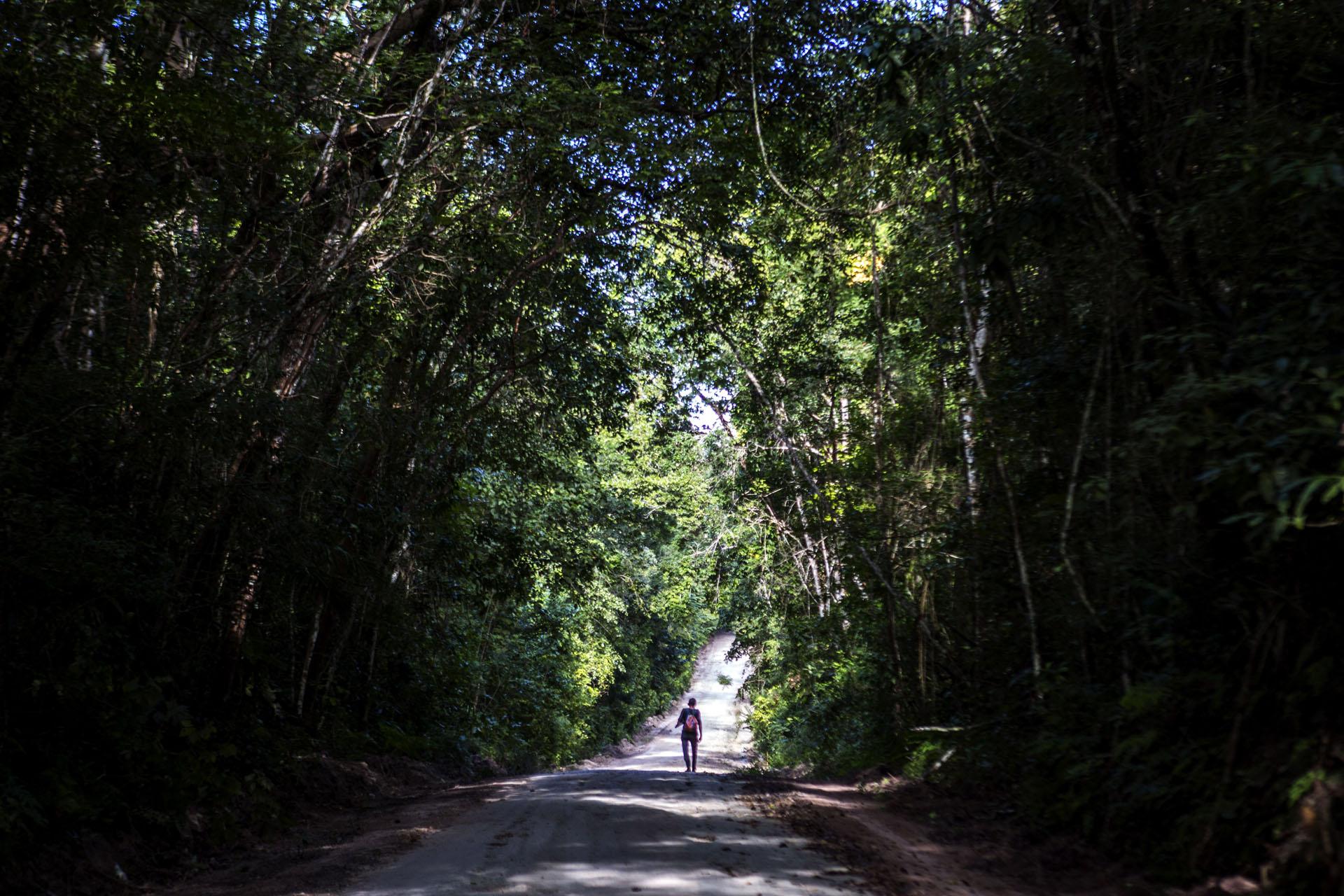 Para llegar hasta Uaxactún se debe atravesar un camino de terracería de 24 kilómetros en el parque arqueológico de Tikal