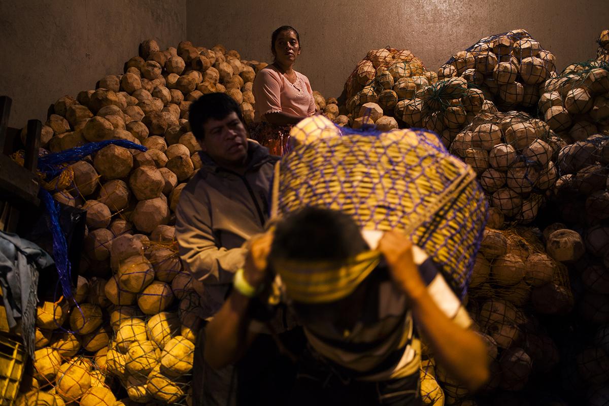 El coco ya está preparado en redes para ser llevado a los diferentes mercados  de barrio de toda la ciudad