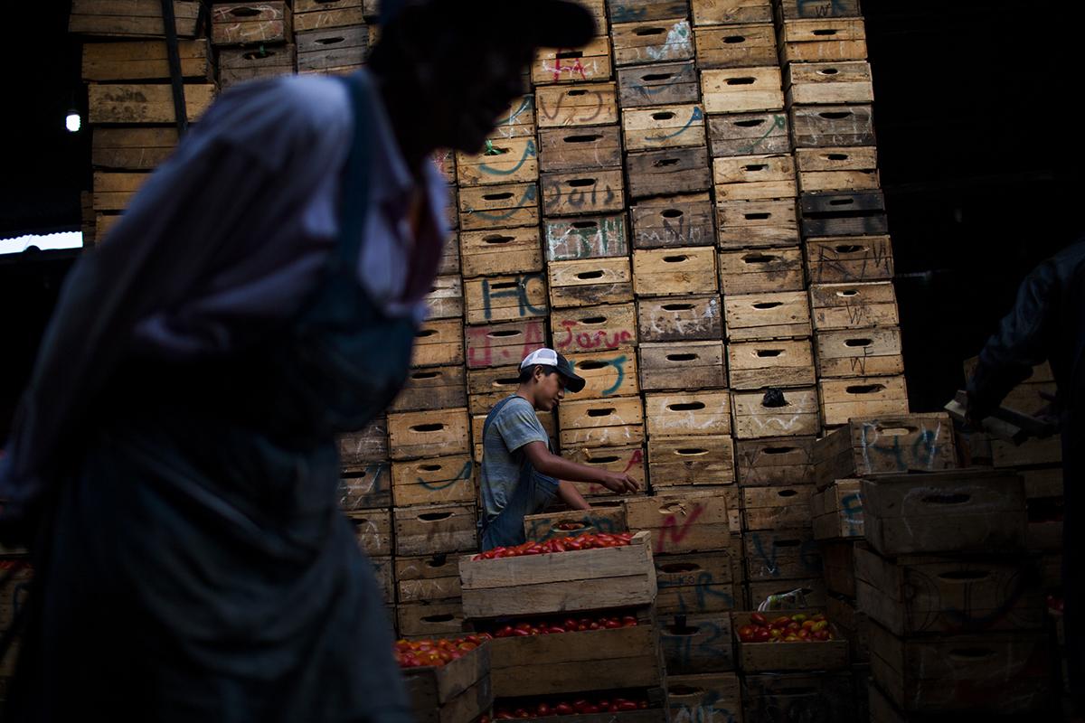"""Repartición del tomate en las cajas de madera – Q70 a Q170 dependiendo de  la temporada – en el sector de la """"tomatera"""""""