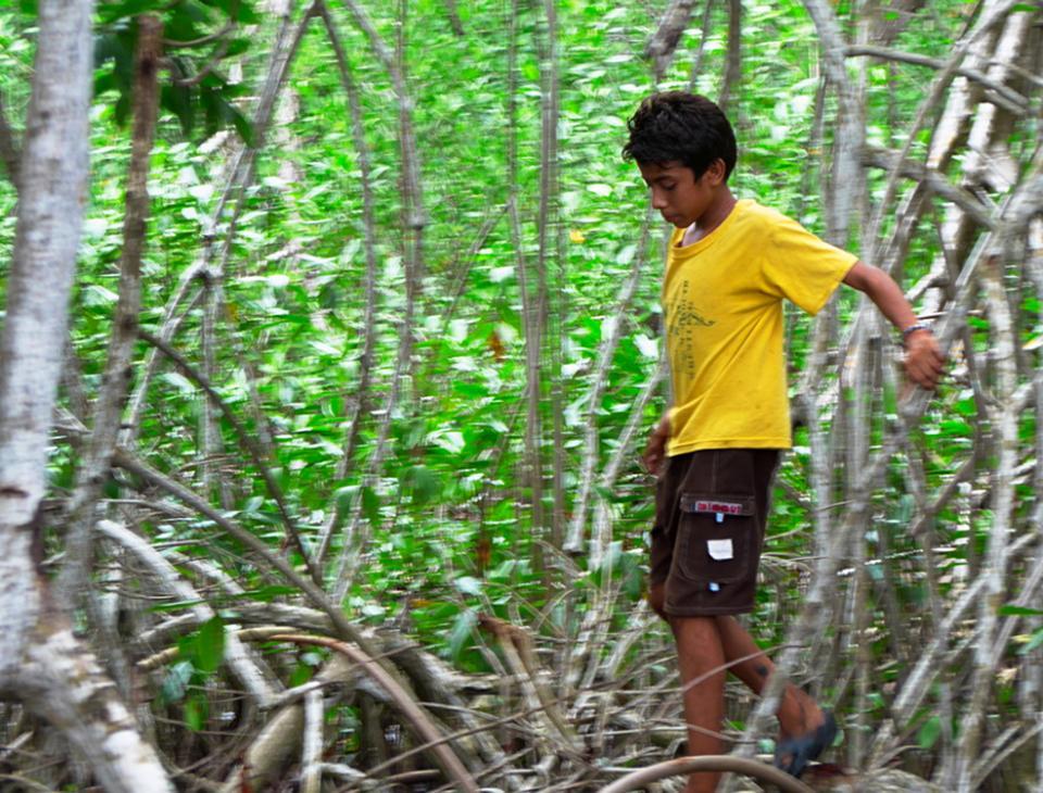 Víctor, de 13 años,  tiene una relación estrecha con el ecosistema del mangle. Sus abuelos le ensañaron a cuidarlo.