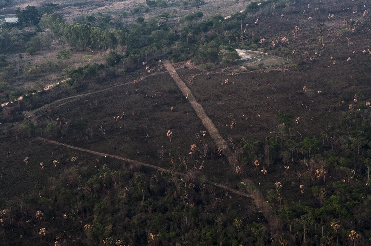 Vista aérea de la pista clandestina ubicada a la par del pozo Xan-30 de la empresa petrolera Perenco