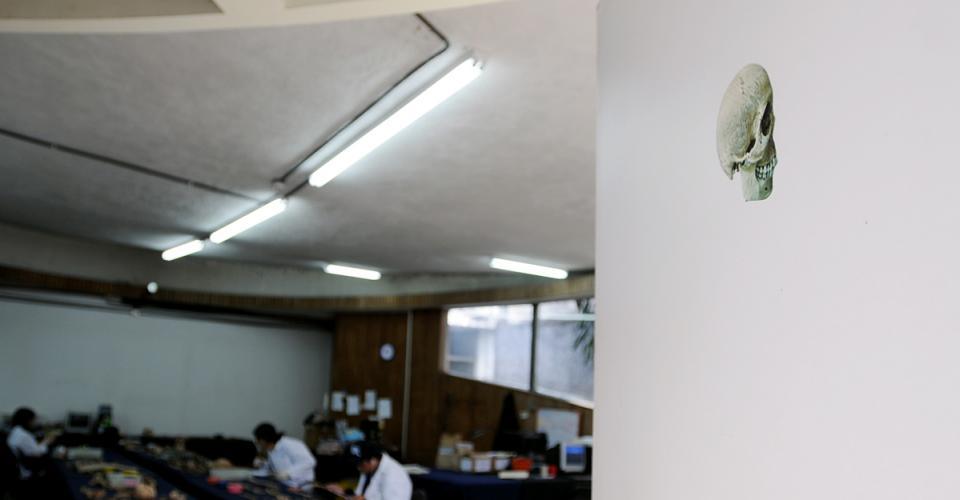 El departamento de Antropología Forense de la Fundación. Ahí limpian y analizan las osamentas.