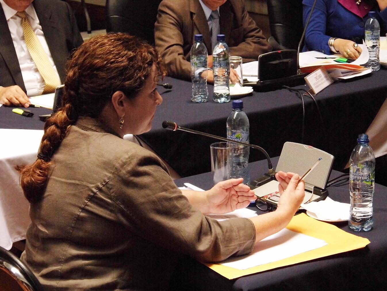 Claudia Paz y Paz ante la Comisión de postulación expone su propuesta.