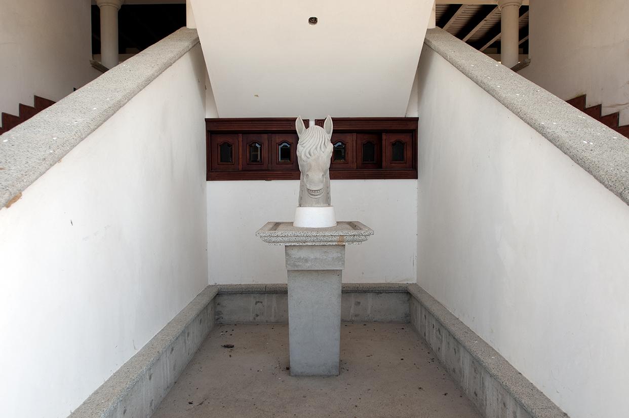 El busto de un caballo en una casa de dos niveles que los alberga. Según representantes del Senabed, Mario Ponce no era tan poderoso, sino hasta 2008 cuando ascendió vertiginosamente, tras la llegada de los Zetas al país.
