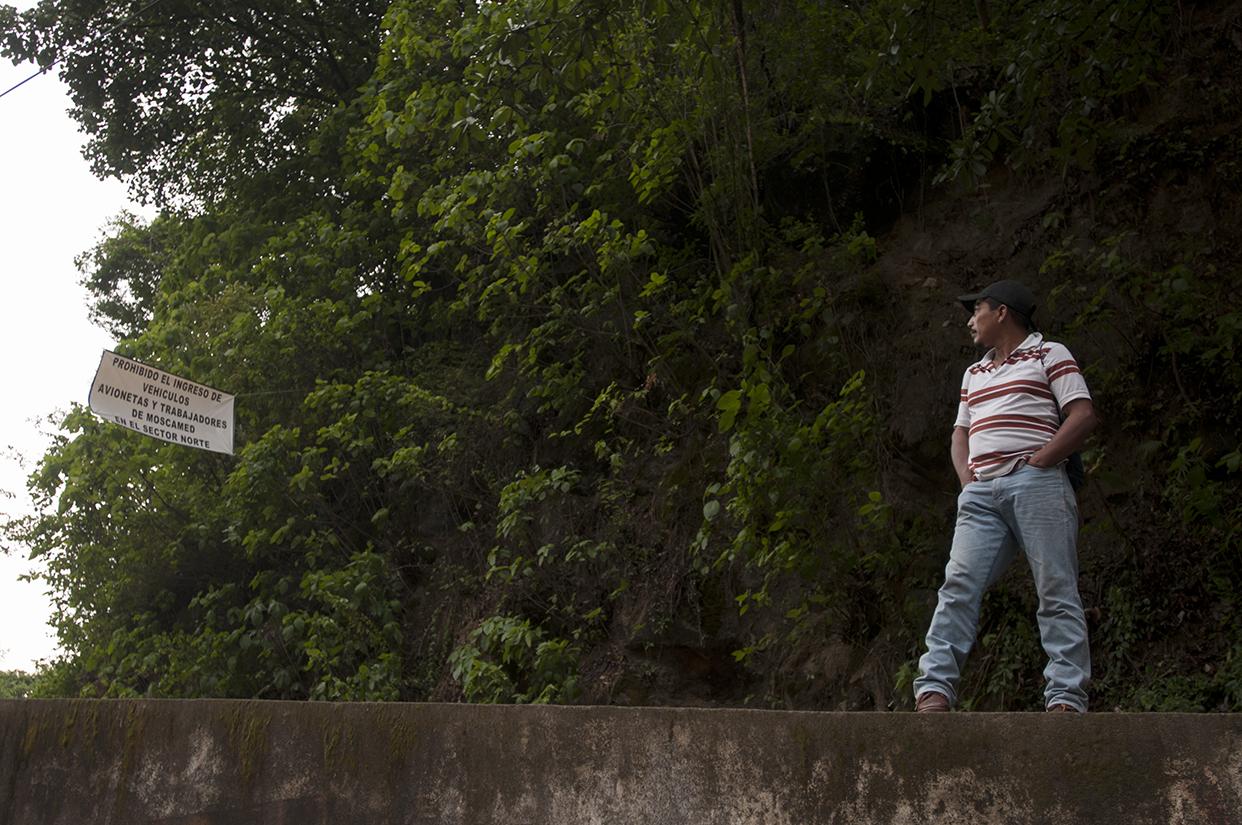 Una manta advierte la prohibición del ingreso de vehículos, avionetas y personal de Moscamed en la entrada de La Democracia, Huehuetenango.