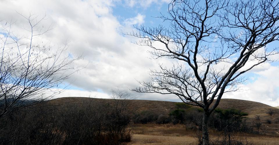 Pese a que el país tiene un fondo para los efectos del cambio climático, este año año su asignación fue de cero.