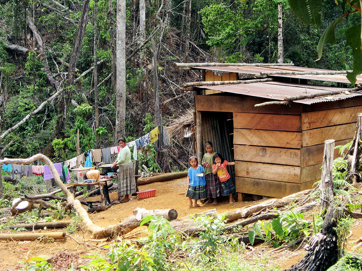 Este terreno de vocación forestal alberga actualmente a 20 comunidades q'eqchíes que reclaman al Estado los títulos de propiedad que llevan gestionando desde los años setenta.