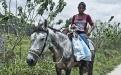 Norma Lourdes Felipe Calderón, 13, trabaja en el campo junto al resto de su familia
