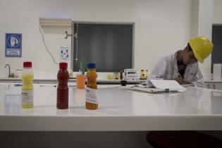 En un laboratorio dentro de la planta extractora, inaugurado en el 2011, se analizan muestras de la palma. Después se transportan a la refinería para volverse aceite.