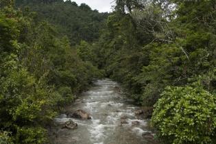 Una ley general de aguas y una normativa para la conservación de bosques no es prioridad en la agenda del congreso.