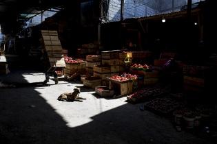 La Tomatera, en el mercado de la Terminal, luce desolada el miércoles 18 de marzo. El bloqueo del transporte público disminuyó enormemente la afluencia de clientes, a pesar de la disponibilidad de producto a vender. Simone Dalmasso