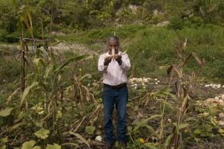 Los campesinos cercanos al monocultivo de palma culpan a ésta de la falta de agua para sus siembras. [Sandra Sebastián]