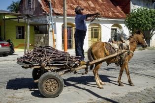 Hombre arrea su caballo en Santa Elena, Petén.