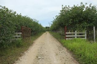 Entrada a la finca El Arroyón, en Dolores, Petén.  Pertenecía al narcotraficante Giovanni España.