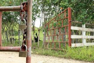 Giovanni España obligó a los aldeanos de El Arroyón, en Dolores, Petén, a vender sus propiedades.
